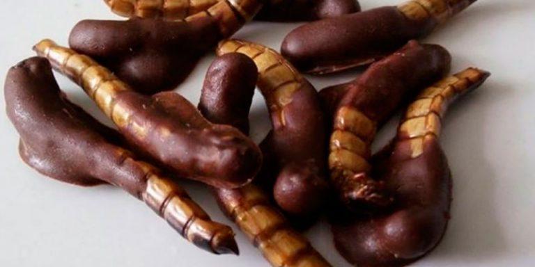 Recetas de Gusanos de maguey bañados con chocolate